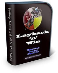 softwarelaybacksmallbox